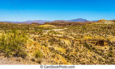 Desert Landscape in Tonto National Forest along the Apache Trail in Arizona, USA