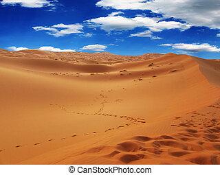Moroccan desert landscape. Dunes background.