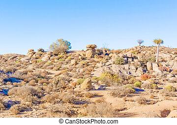 Desert landscape near Kliprand in South Africa