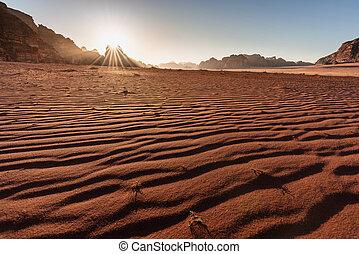 Desert landscape, Wadi Rum desert in Jordan at sunrise