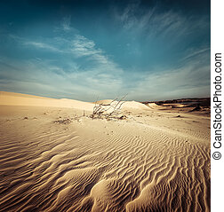 Desert landscape with dead plants in sand dunes. Global warming