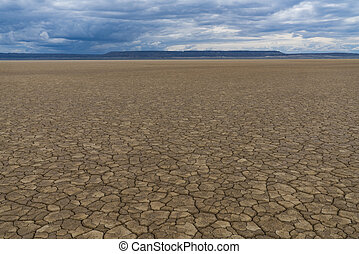 Desert landscape with dried, cracked mud