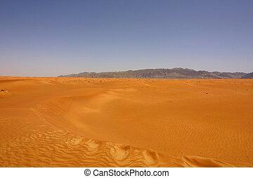 Desert Mirage - A desert scene in United Arab Emirates