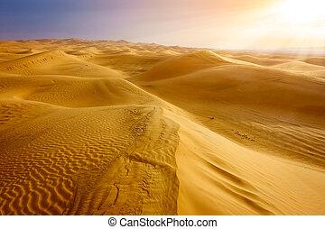 Desert near Al Ain, UAE at dawn