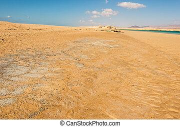 Desert of Ras Mohammed national park, red sea, Sinai, Egypt