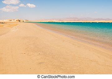 Desert of Ras Mohammed national park, Sinai, Egypt