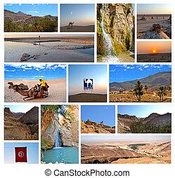 Desert of the Sahara