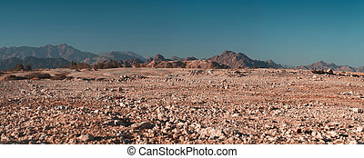 Desert on a background of mountains