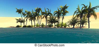 desert., panorama, oasi