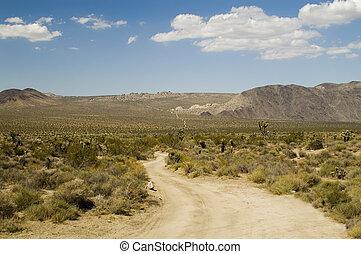 Desert Road - An endless rugged, twisting road in Joshua...