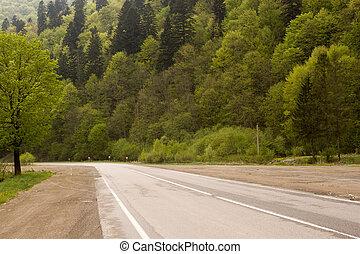 Desert road in the Carpathians