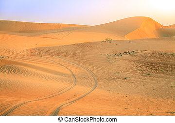 Desert road - Tire tracks in a desert near Dunai, UAE