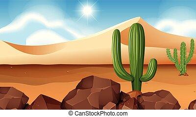 Desert scene with cactus