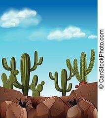 Desert scene with cactus plants