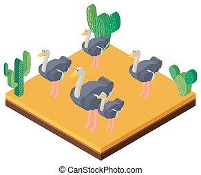 Desert scene with ostriches in 3D design