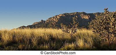 Desert Scenics: Sandia Mountains in Golden Light