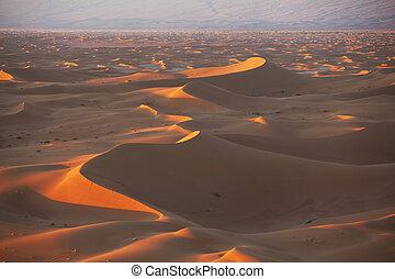 Desert - Sahara desert