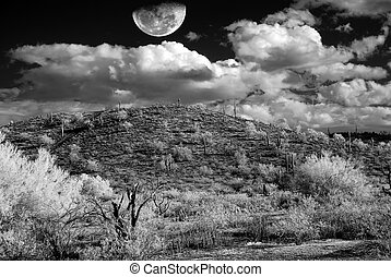 Desert Storm - Monochrome Desert storm over the southwestern...