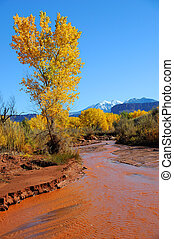 Desert Stream in Fall with Snowy Mountains
