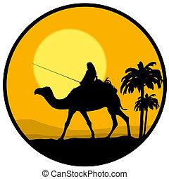 desert, sunset and the camel - wanderer in the desert at...