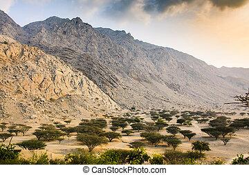 Desert sunset near Ras al Khaimah in the UAE
