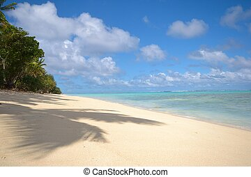 Desert tropical beach