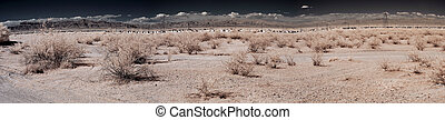Panorama of a distant desert village
