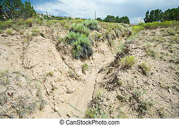 Desert Wash Arroyo Showing Erosion New Mexico - Gully Wash ...