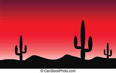 Desert with cactus plants. Evening - Mexico desert with...