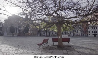 Deserted lockdown Venice city square with branched bare tree among small wooden benches against nice grey buildings in Italy