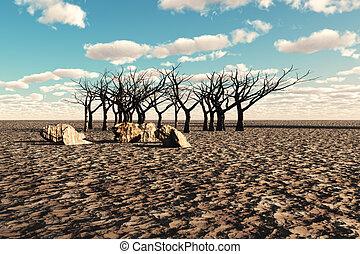 deserto, arido