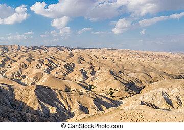 deserto, de, direita