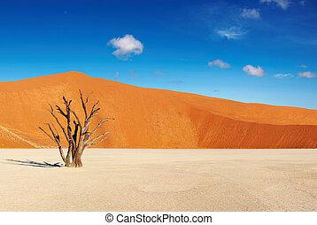 deserto namib, namibia, sossusvlei