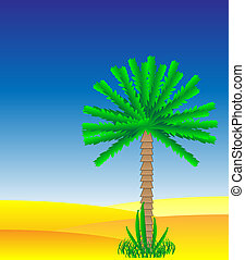 deserto palma