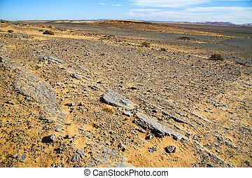 deserto, pedra, fóssil, antigas, céu