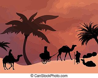 deserto, sahara, oasi
