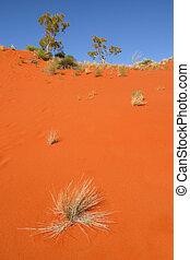 deserto vermelho, duna areia, aust