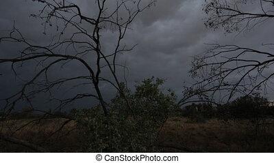 Deserts scene after sunset, Australia Outback - Medium still...