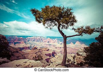 desfiladeiro grandioso parque nacional, arizona