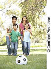 desfrutando, parque, dia, família