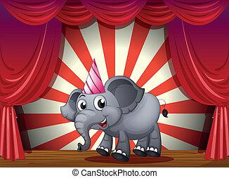 desgastar, partido, fase, chapéu, elefante