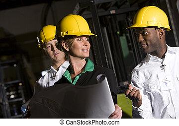 desgastar, trabalhadores escritório, difícil, armazenamento, armazém, chapéus