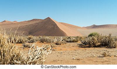 desierto de namib, (namibia)