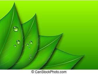 design, blad, grön fond