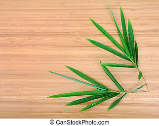design of chinese bamboo trees with