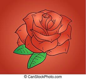elegant rose illustration