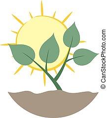 life nature symbol