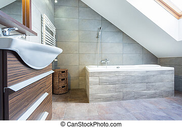 Designer bathroom in luxury house