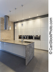 Designers interior -White kitchen