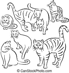 designs-set, lijn, 2, kat
